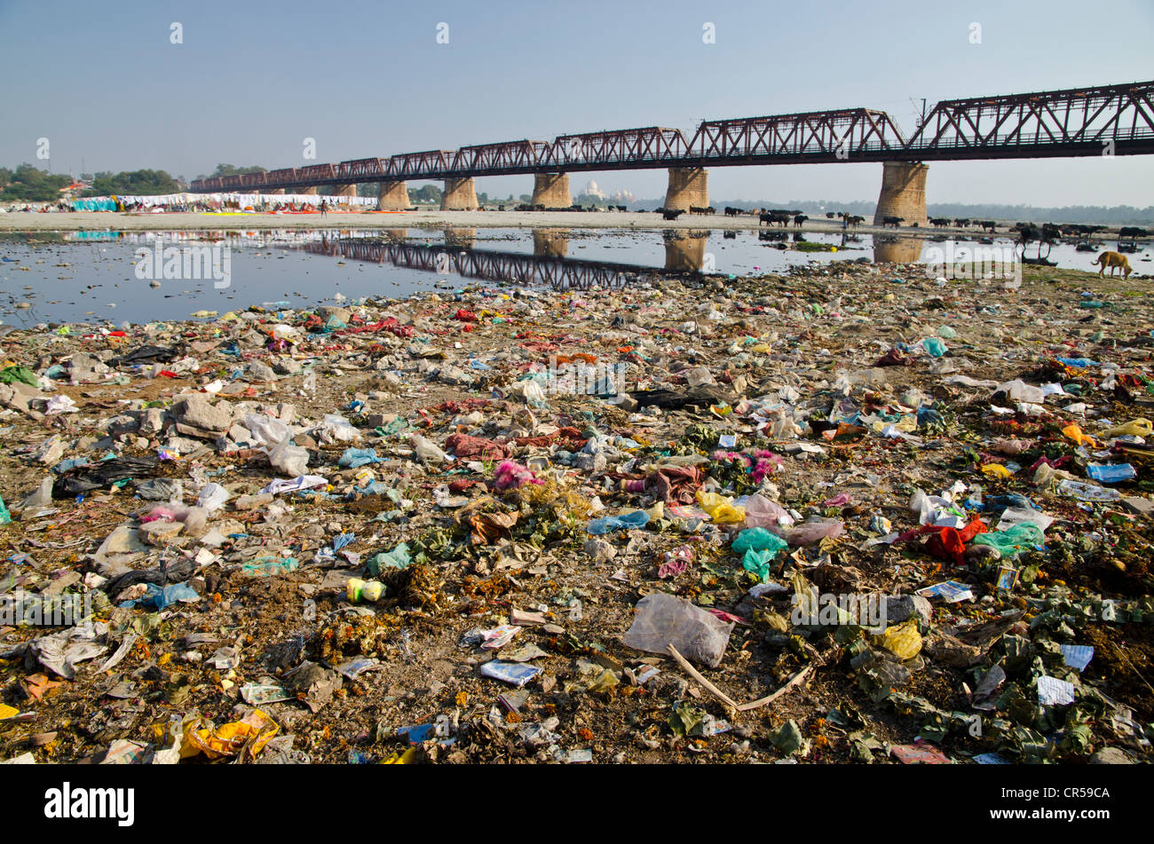 Asian pic dump pics 318