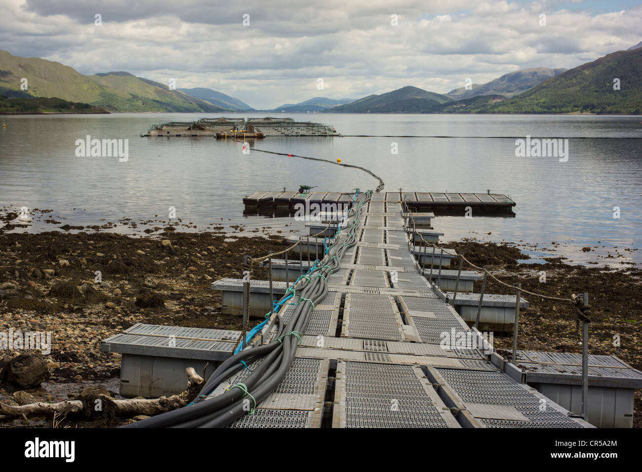 Salmon fishery, Loch Linnhe, near Fort William and Ben Nevis,Scotland - Stock Image