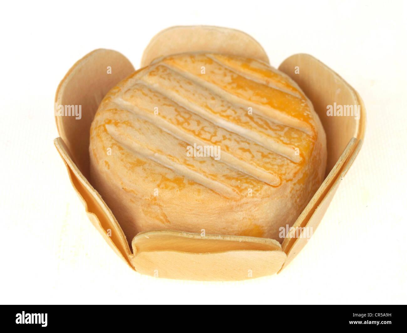 Saint Vernier Cheese - Stock Image