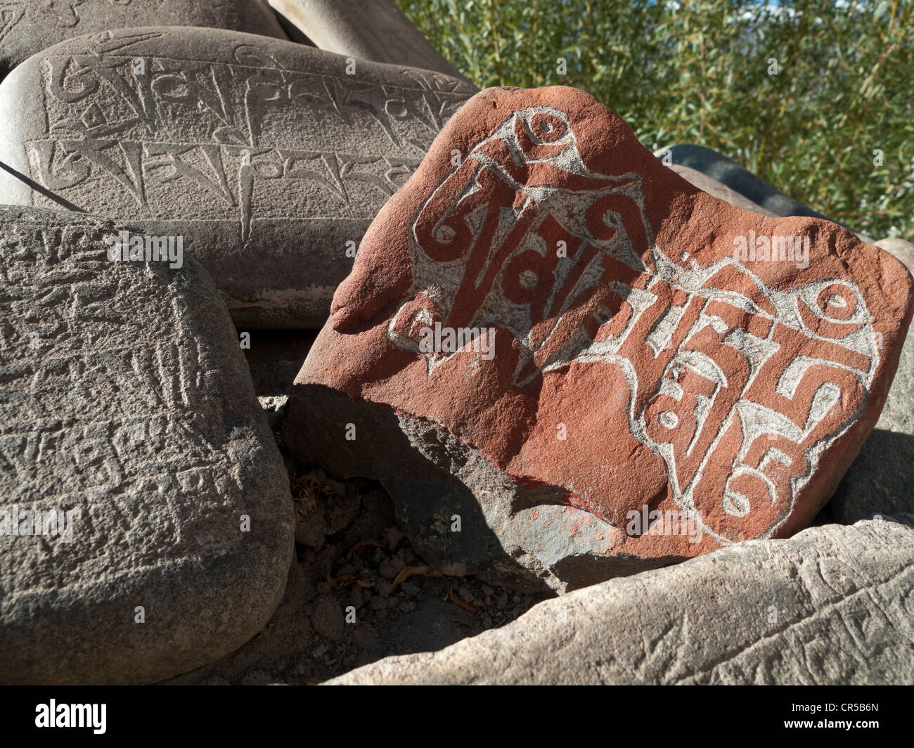 Mani stones with the carved 'Om Mani Padme Hum', the mantra of Avalokiteshvara, the Buddha of Compassion, - Stock Image