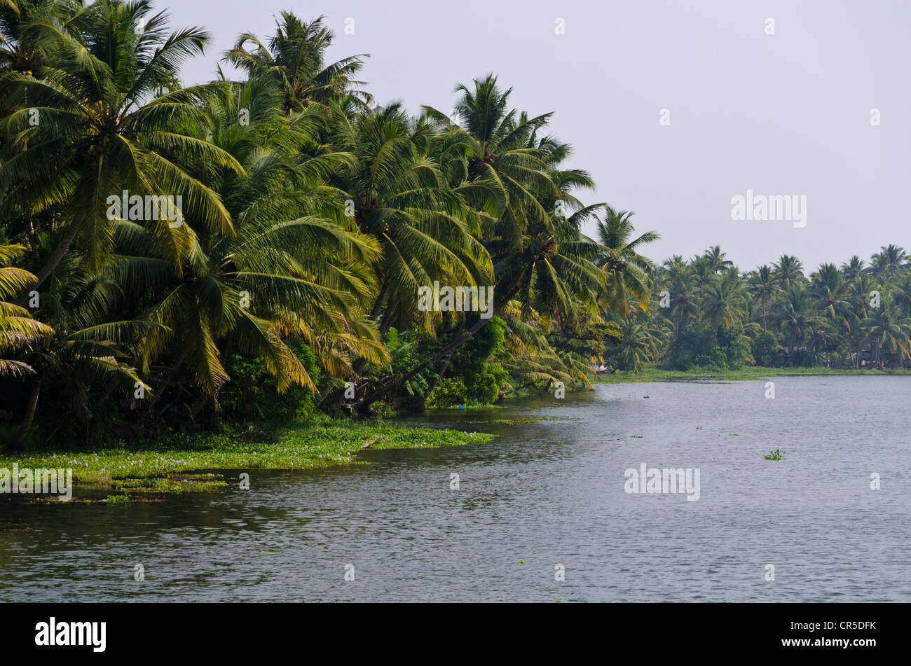 Kerala Landscape High Resolution Stock Photography And Images Alamy