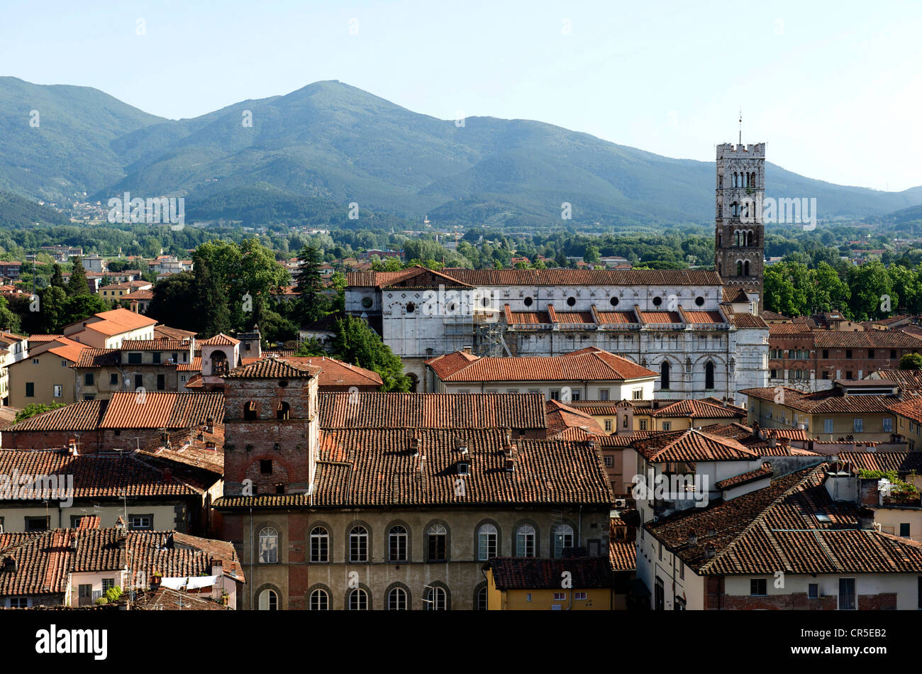 Italy, Tuscany, Lucca, Duomo di San Martino (St Martin Cathedral) with Romanesque Style Stock Photo