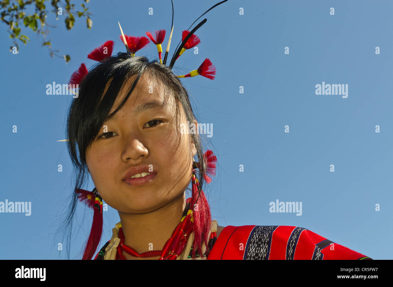 Woman of the Lotha tribe with traditional headdress at the annual Hornbill Festival, Kohima, Nagaland, India, Asia Stock Photo