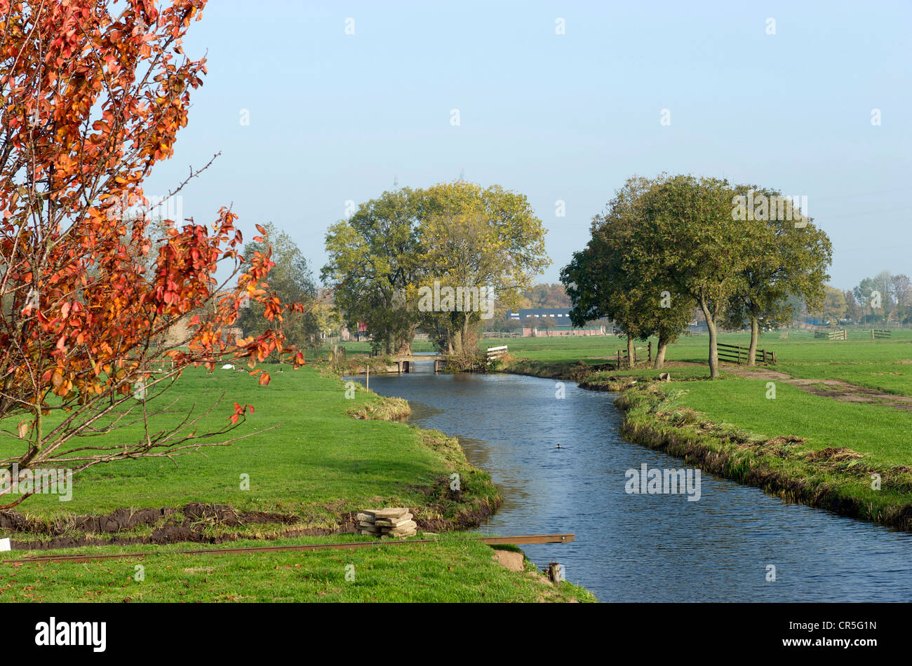 Netherlands, South Holland Province, polder around Rotterdam - Stock Image