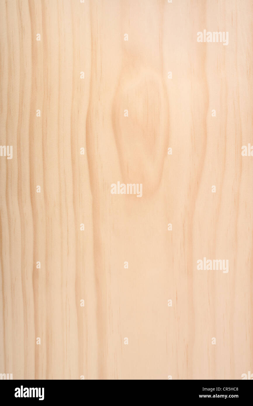 Monterey Pine or Pinus Radiata background, bare wood, untreated. - Stock Image
