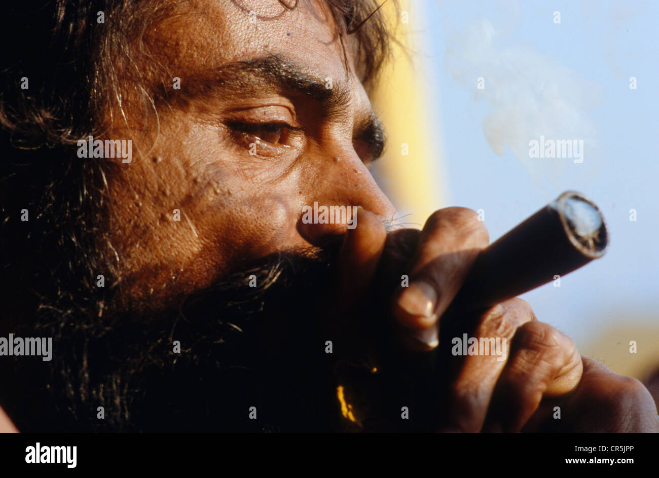Smoking Ganja is illegal, but Sadhus refer to Shiva to have been smoking too, Varanasi, Uttar Pradesh, India, Asia - Stock Image
