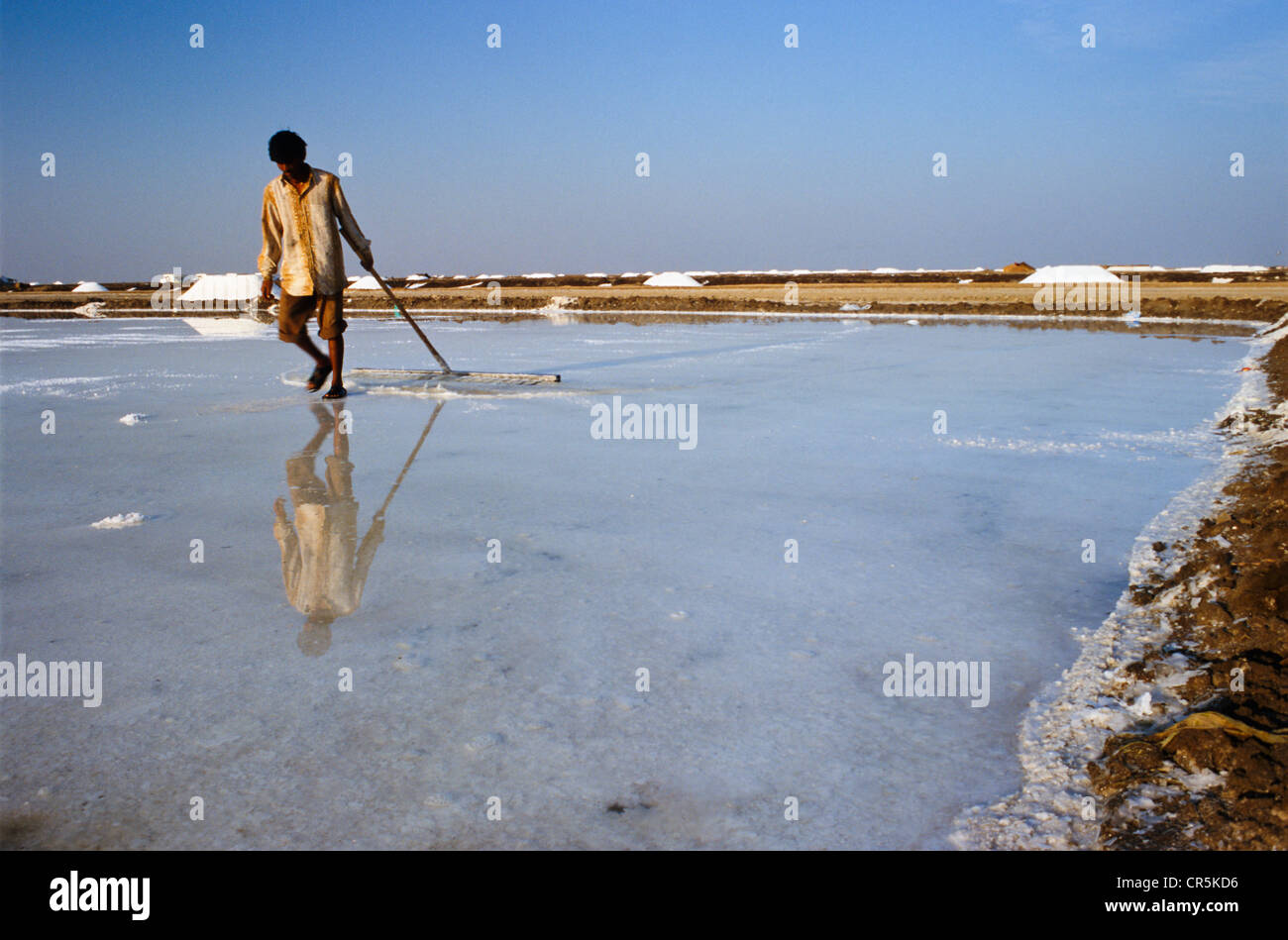 Worker in the saltpans, Malya, Gujarat, India, Asia Stock Photo