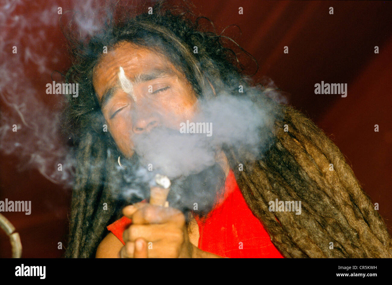 Smoking ganja is illegal, but Sadhus refer to Shiva, who also used to smoke, Allahabad, Uttar Pradesh, India, Asia - Stock Image