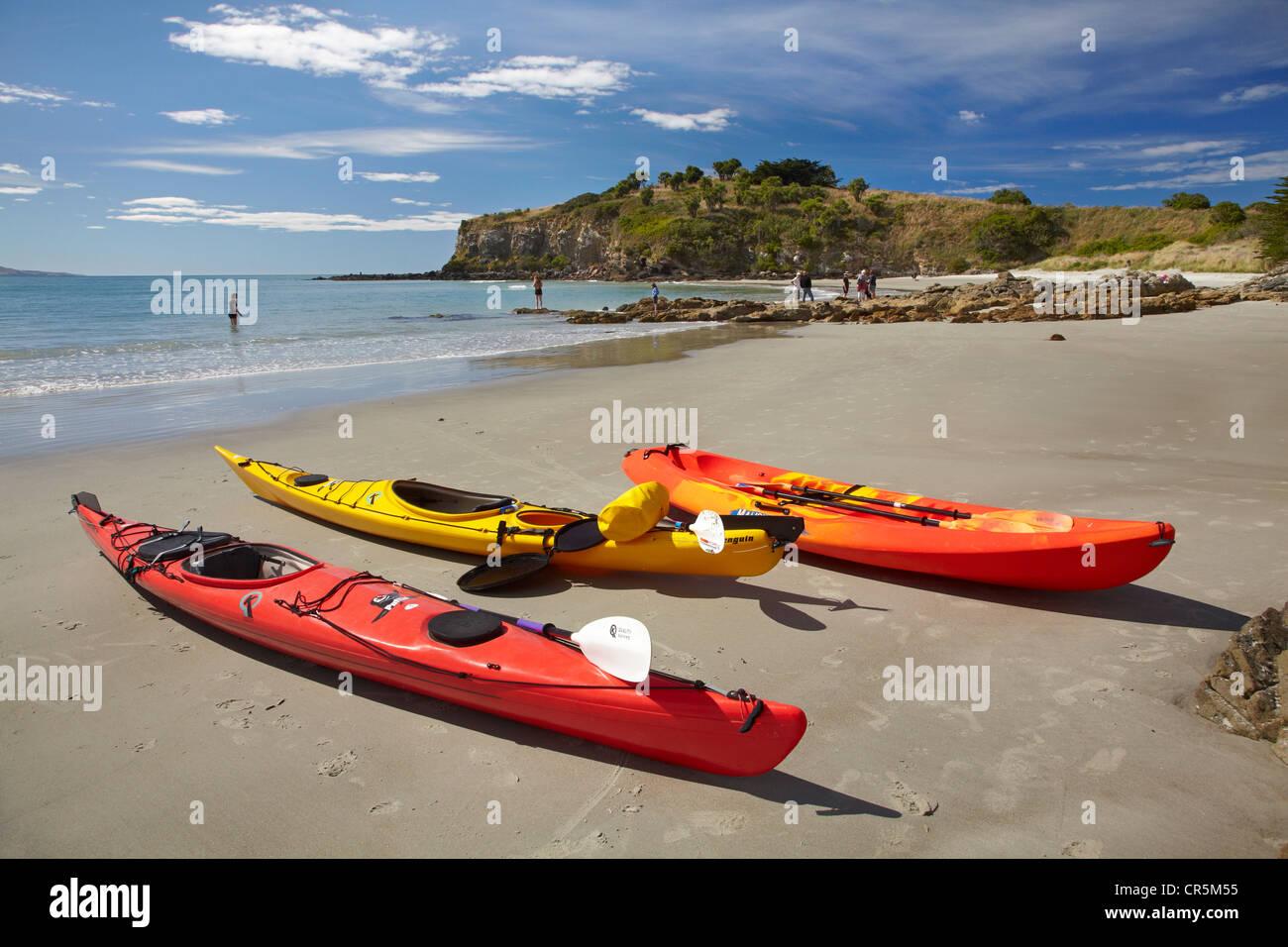 Kayaks on beach near Doctors Point, and Mapoutahi Pa, Historic Maori Pa Site, north of Dunedin, South Island, New Stock Photo