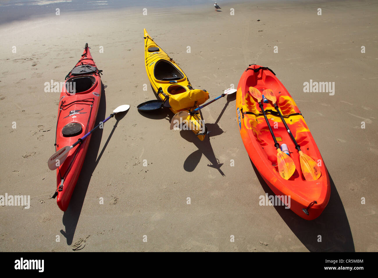Kayaks on beach by Doctors Point, north of Dunedin, South Island, New Zealand Stock Photo