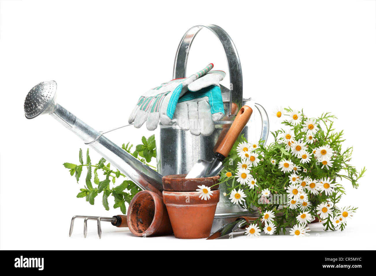 Gardening tools and flowers isolated on white. Stock Photo