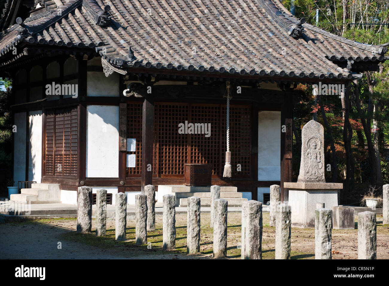 Japan, Honshu Island, Kinki Region, city of Nara, Historic Monuments of Ancient Nara UNESCO World Heritage, Yakushi - Stock Image