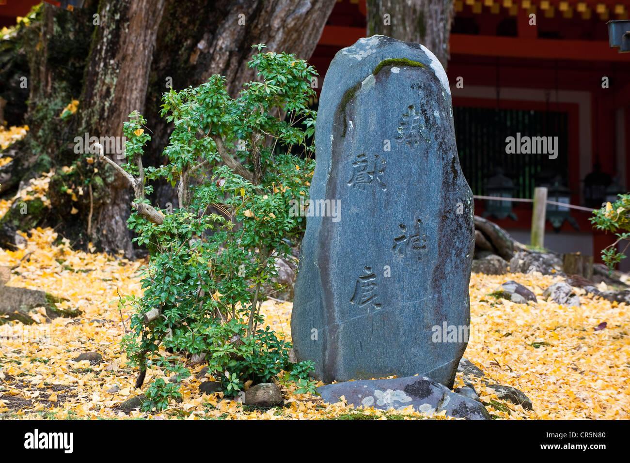 Japan, Honshu Island, Kinki Region, city of Nara, Historic Monuments of Ancient Nara UNESCO World Heritage, the - Stock Image