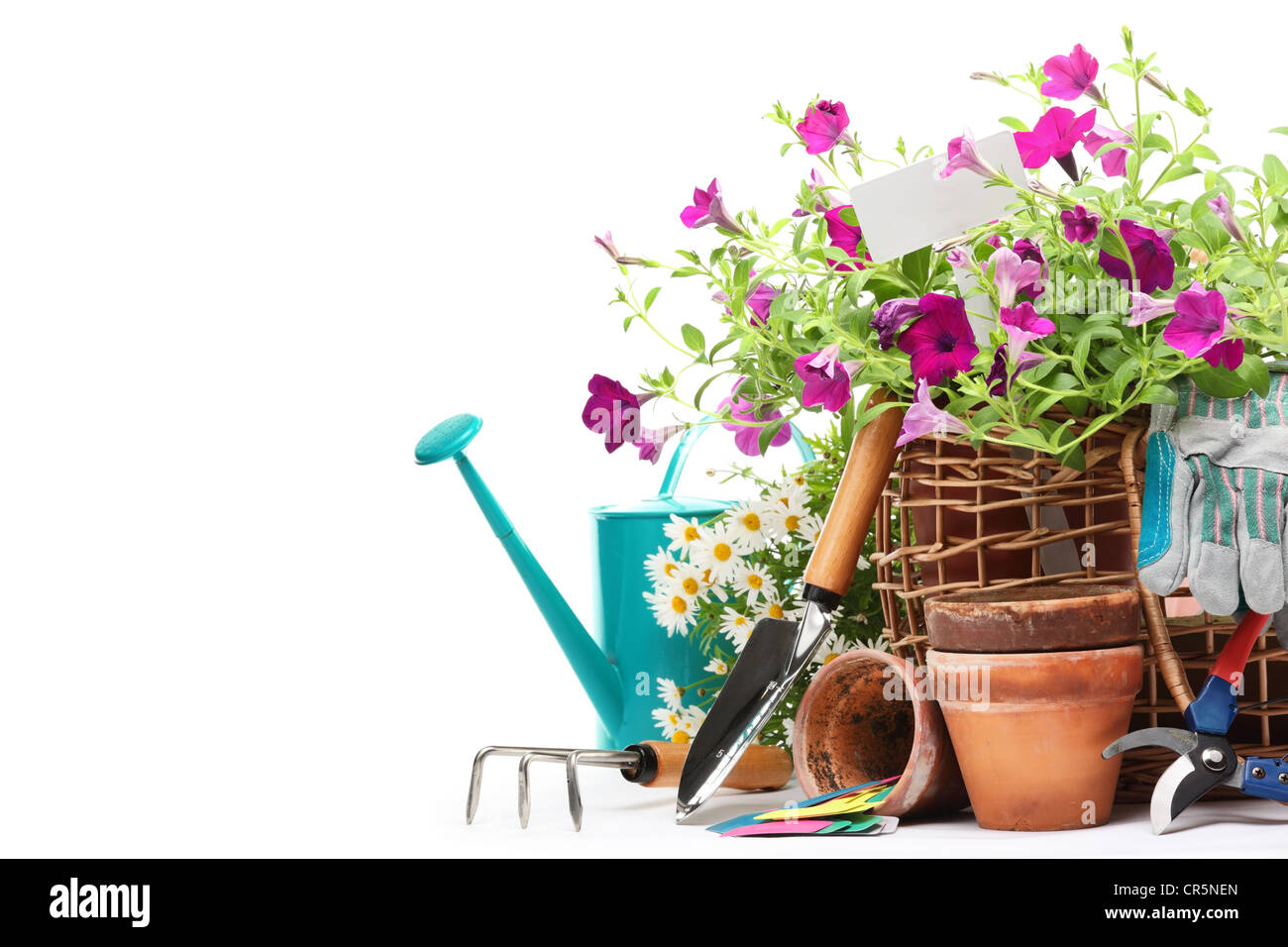 Gardening tools and flowers isolated on white. - Stock Image