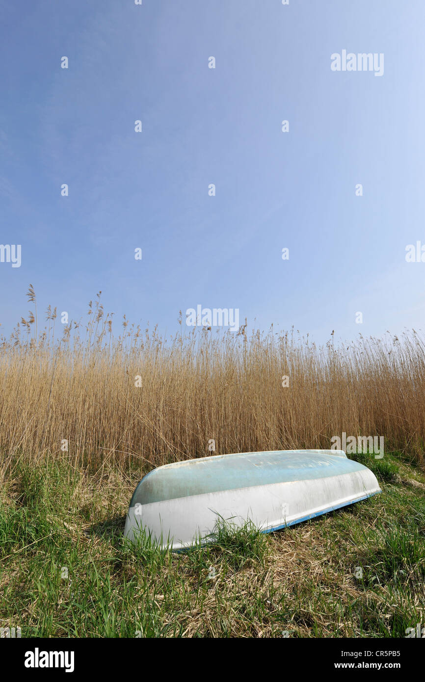 Small boat lying upside down on a surface made of reeds and grass under a blue sky, with space in the sky for text, - Stock Image