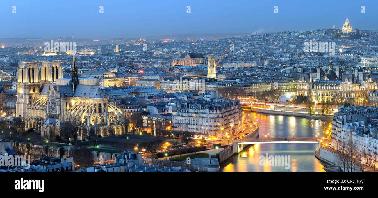France, Paris, the banks of the Seine river UNESCO World Heritage, general view with the Seine river and Notre Dame Stock Photo