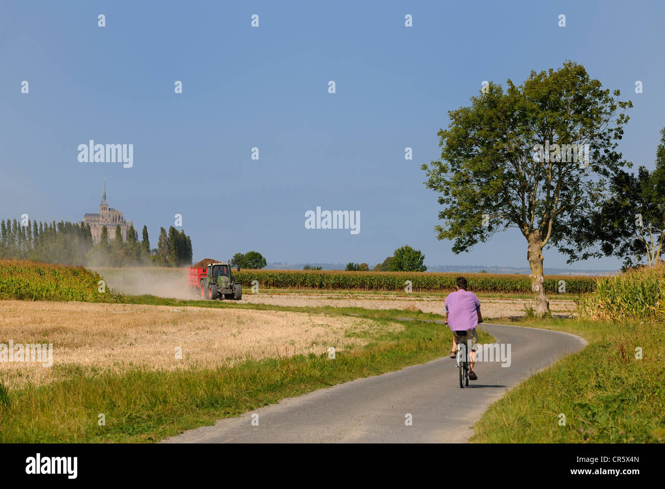 France, Manche, Bay of Mont Saint Michel, road of the mills - Stock Image