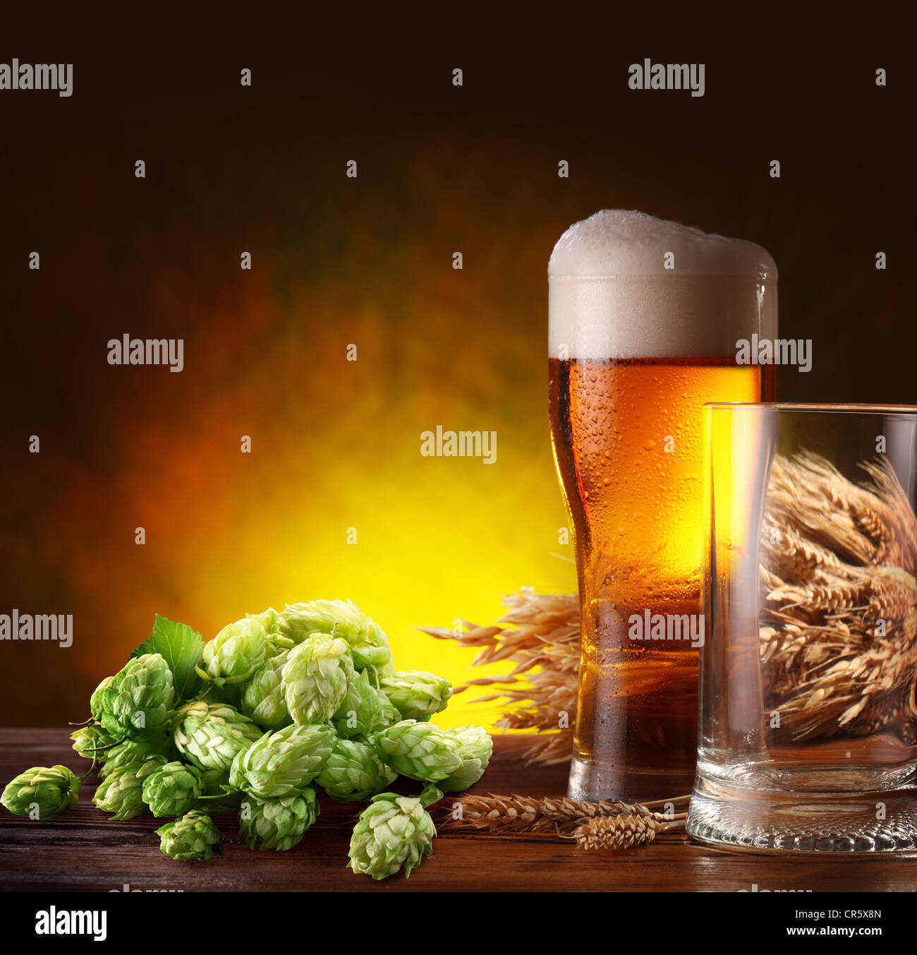 Still life with a keg of beer and hops. - Stock Image