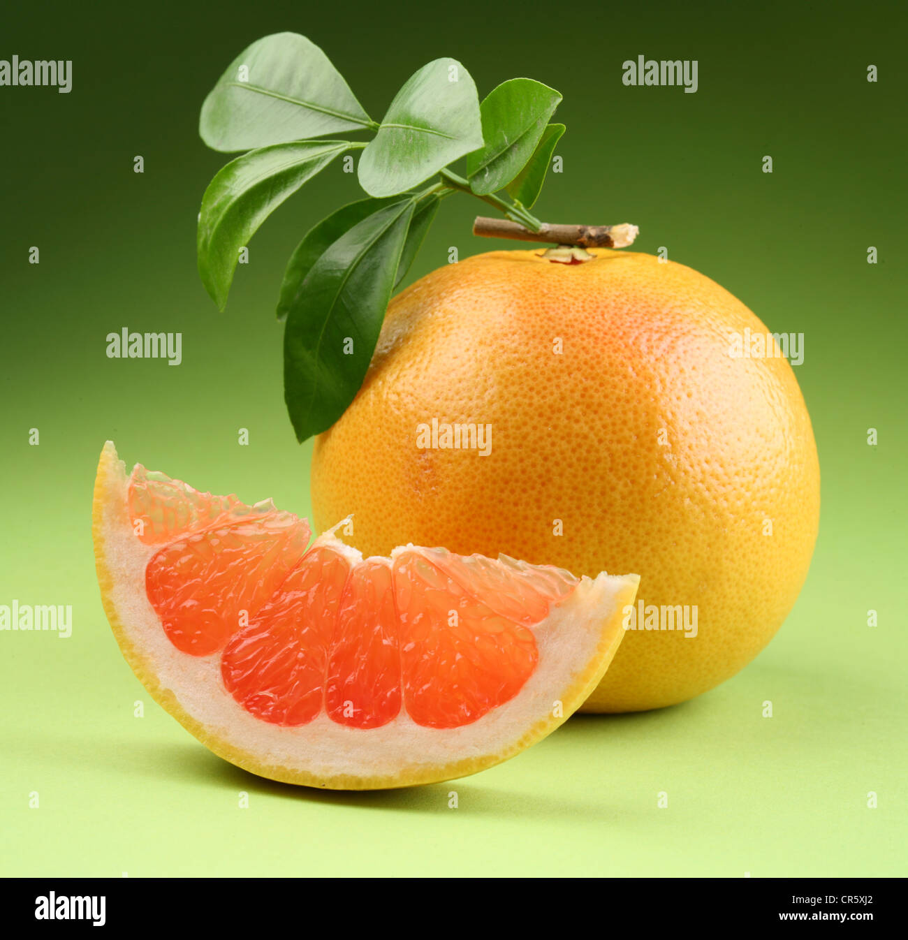 grapefruit with leaves on a green background - Stock Image