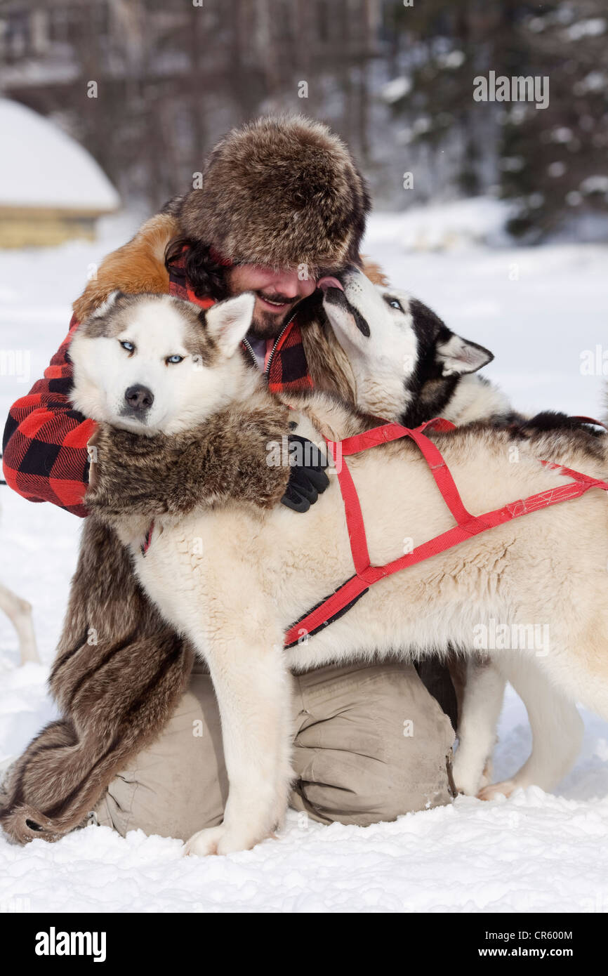 Canada, Quebec Province, Quebec City, musher (sled driver) and his husky - Stock Image