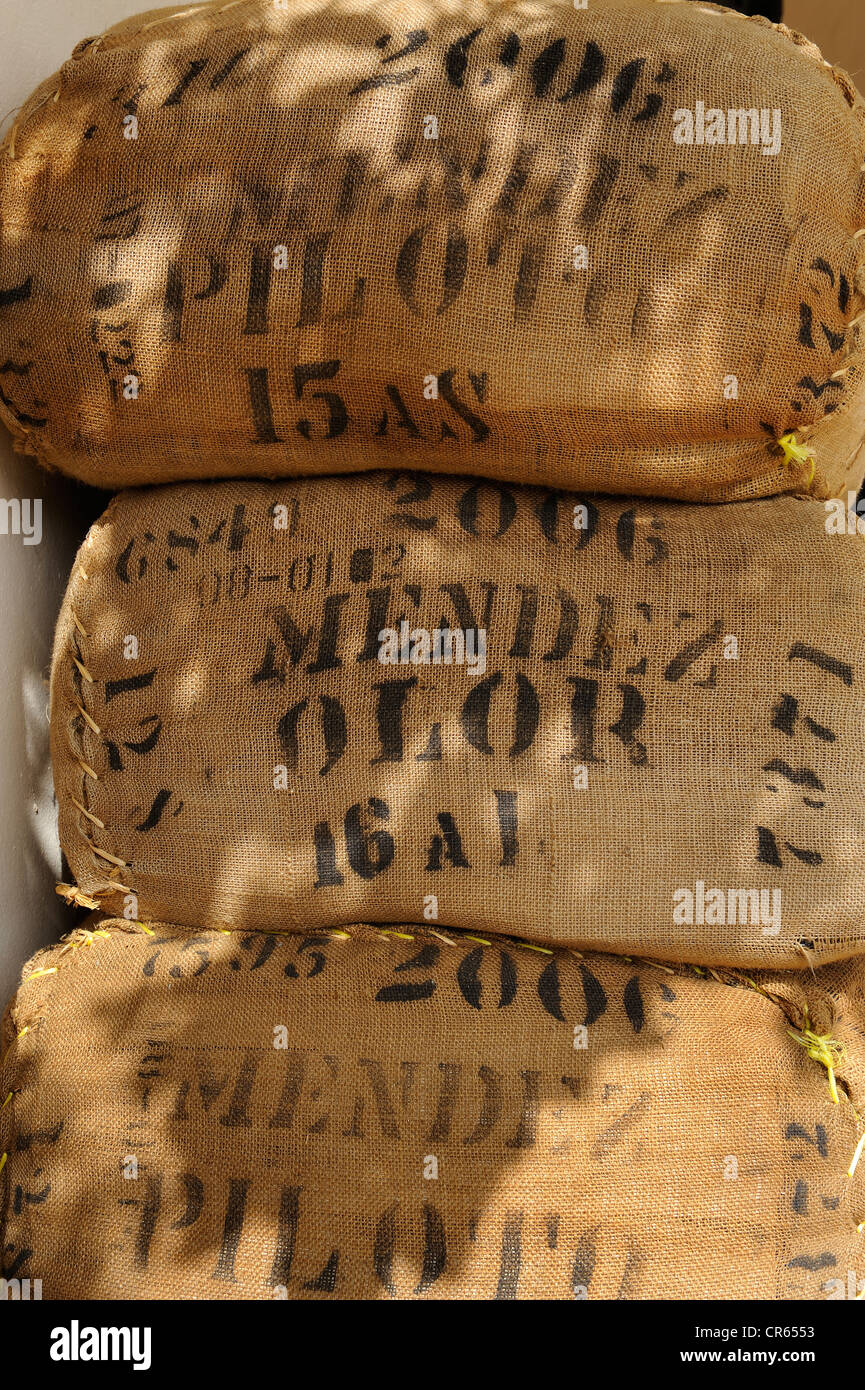 Bags of coffee beans at a coffee roasters, Dominican Republic, Caribbean - Stock Image