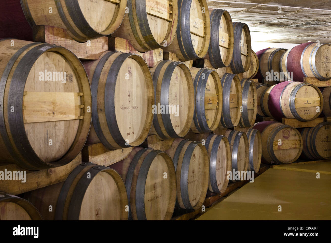South Africa, Western Cape, Somerset West, Vergelen vineyard domain funded by former governor Willem Adriaan Van - Stock Image