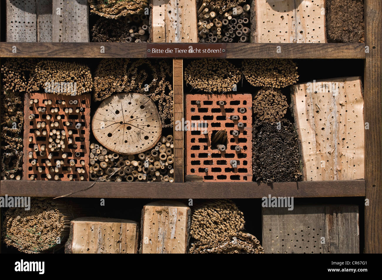 Insect house, insect hotel with notice 'Bitte die Tiere nicht stoeren!', German for 'Please do not disturb - Stock Image