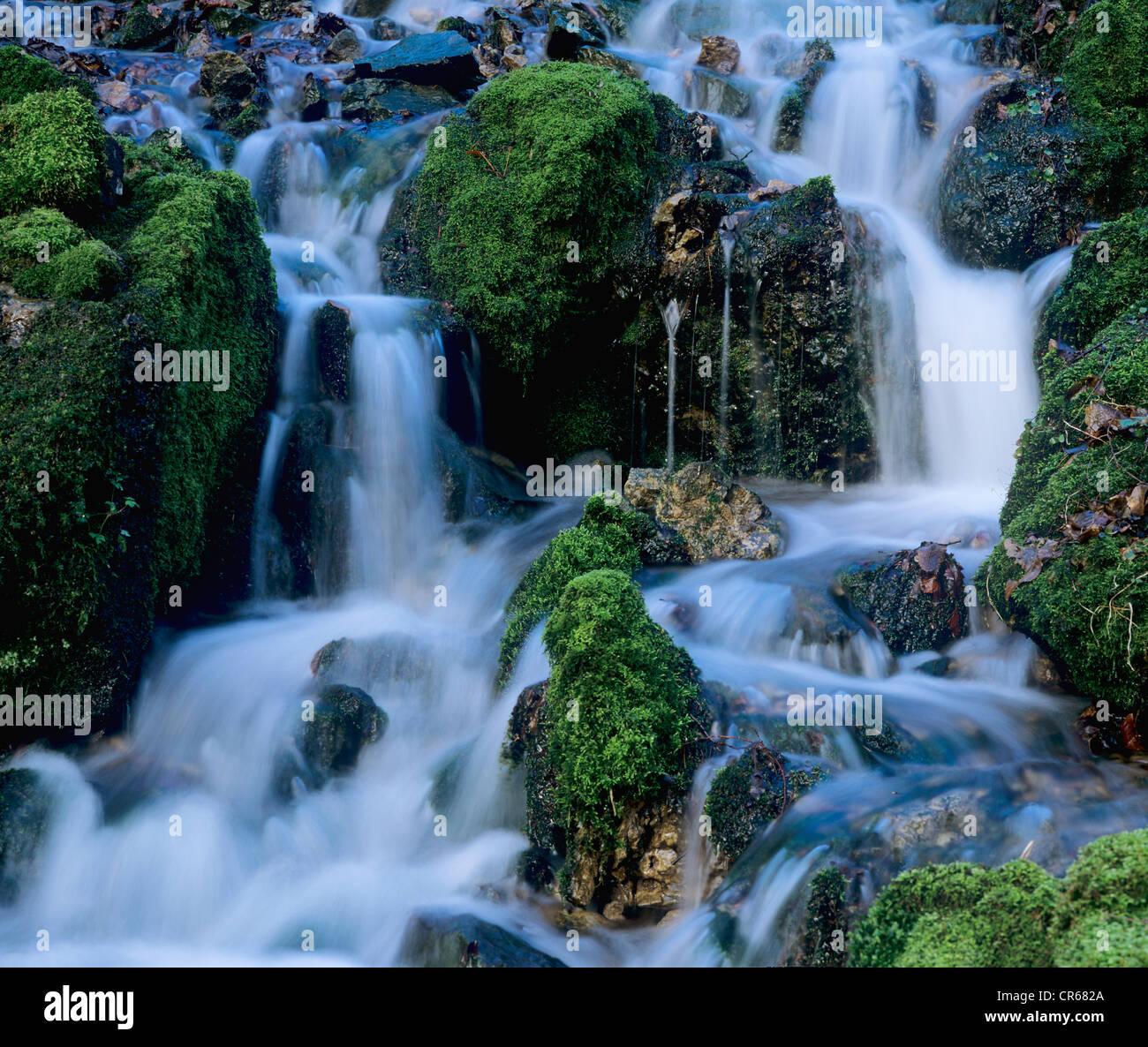 Forest stream flowing over mossy rocks, Glasbach creek, North Rhine-Westphalia, Germany, Europe - Stock Image