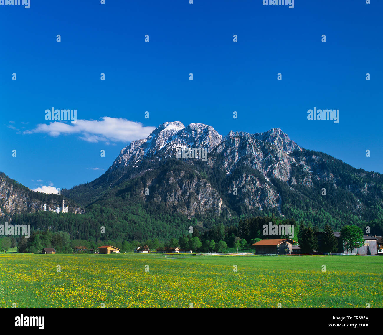 Schwangau, Allgaeu panorama with mountains and hut, Schloss Neuschwanstein Castle, left, Bavaria, Germany, Europe - Stock Image