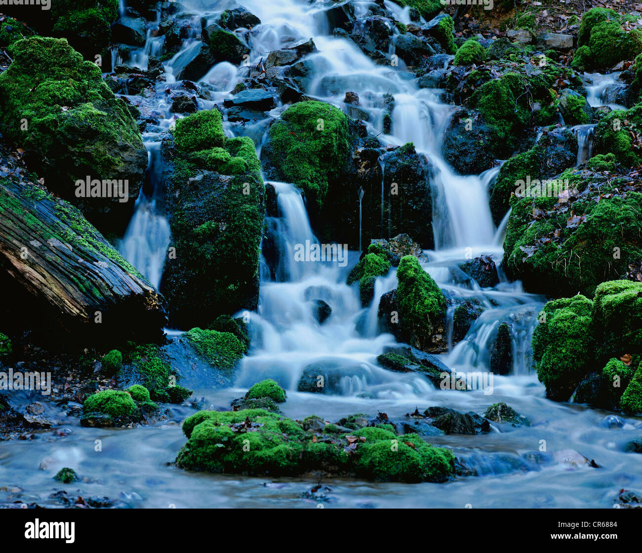 Waterfall in a forest, mountain torrent, Glasbach stream, North Rhine-Westphalia, Germany, Europe - Stock Image