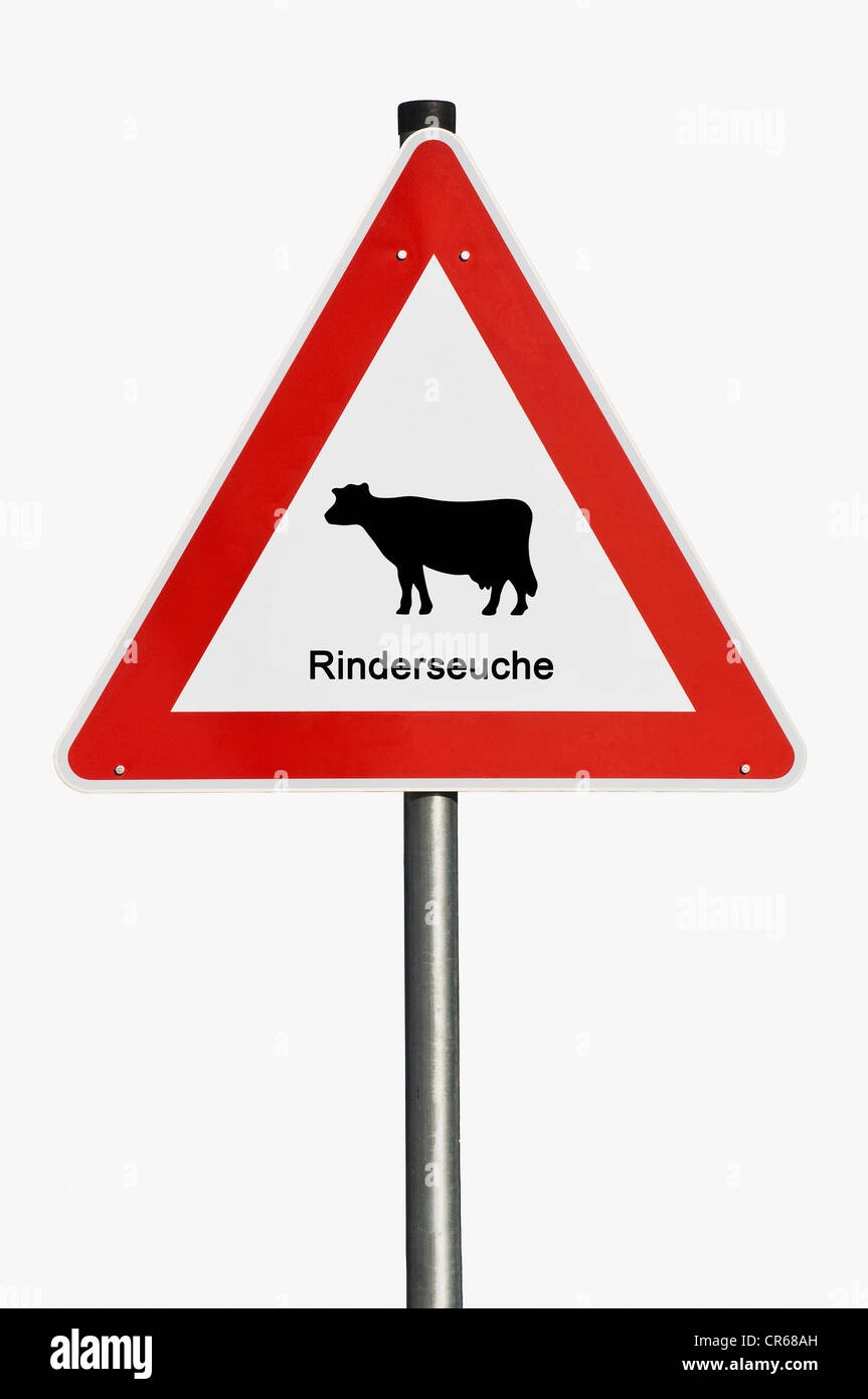 Warning sign, Rinderseuche, German for mad cow disease - Stock Image