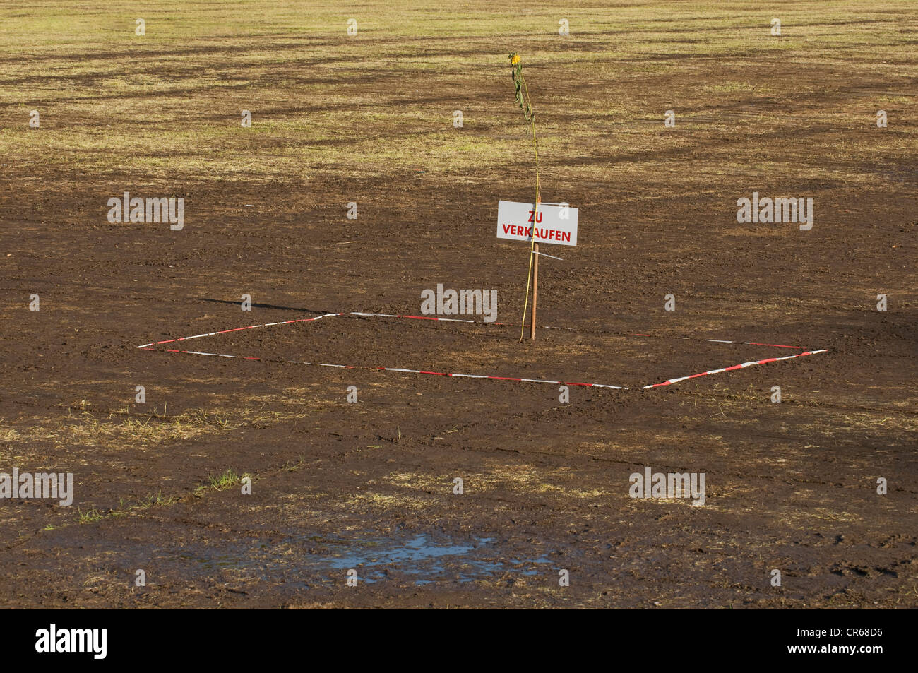 Plot of land with a Zu verkaufen sign, German for For Sale, PublicGround - Stock Image