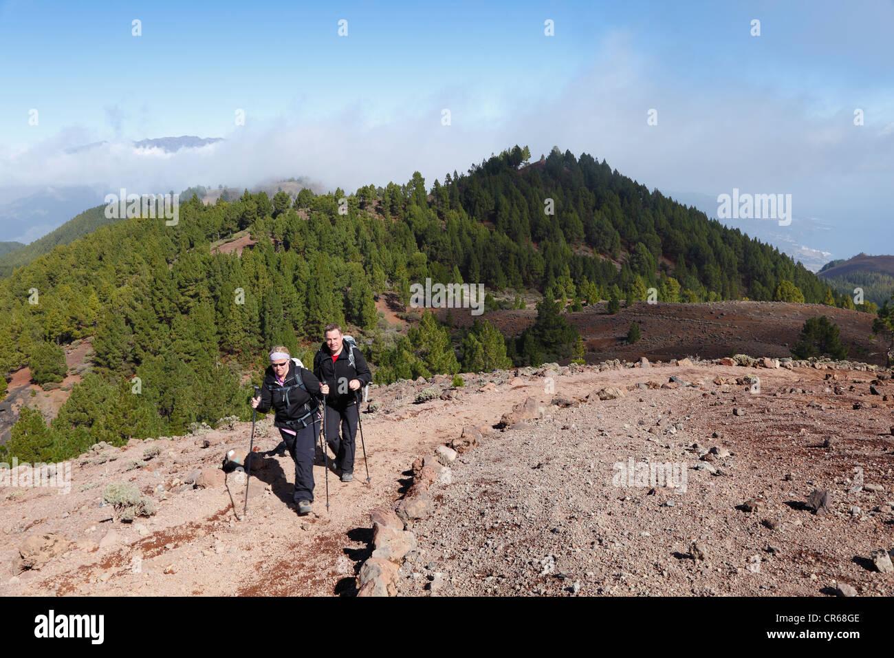 Spain, La Palma, Hikers on Ruta de los Volcanes - Stock Image