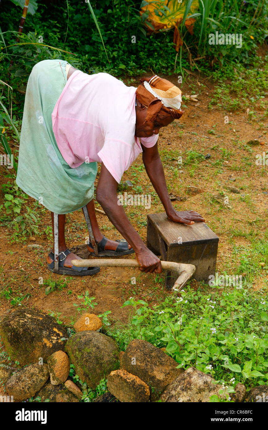 Leper using stool as walker, gardening work, TB and leprosy centre ...