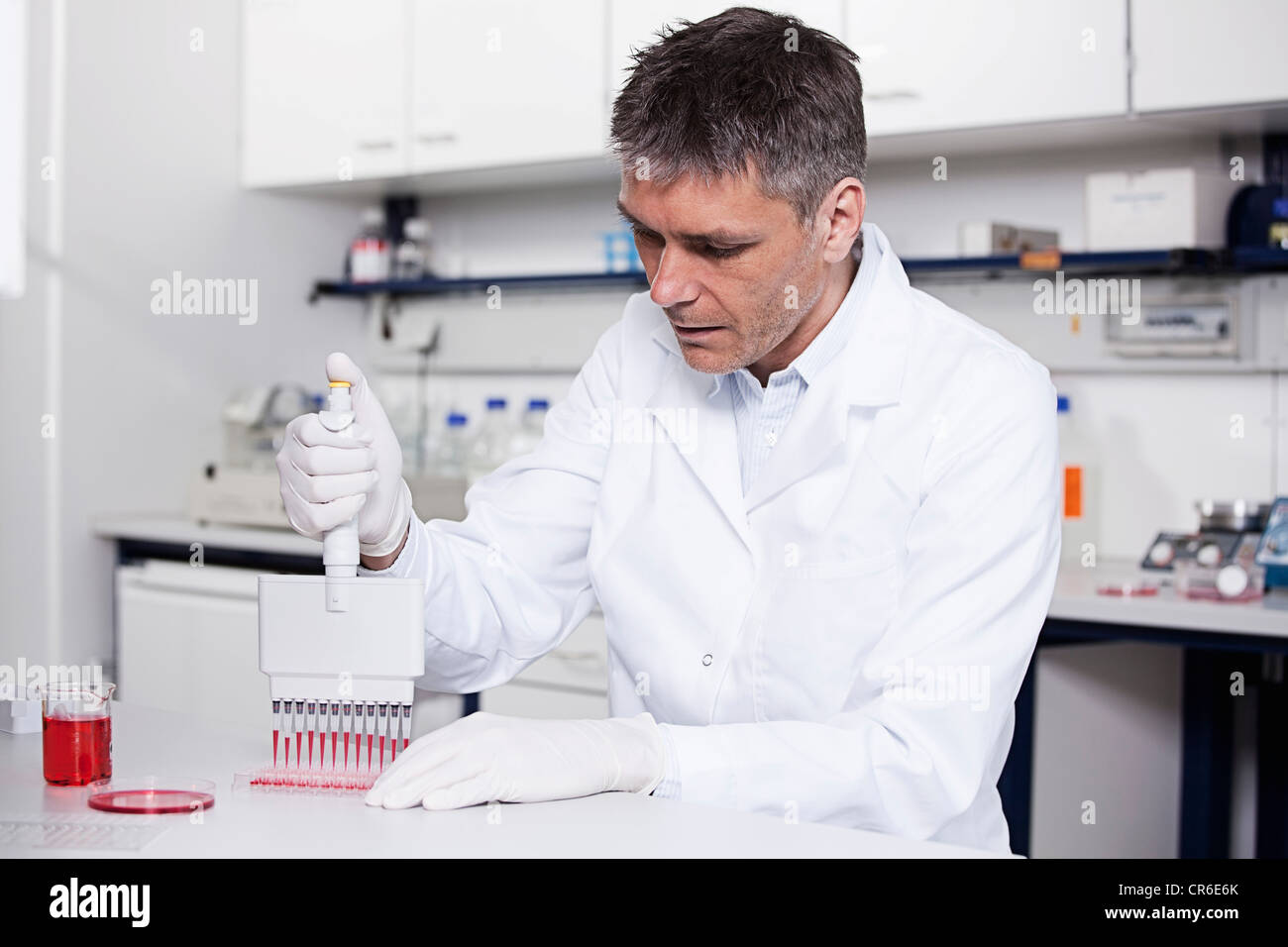 Germany, Bavaria, Munich, Scientist pouring red liquid with pipette in test tray for medical research in laboratory - Stock Image