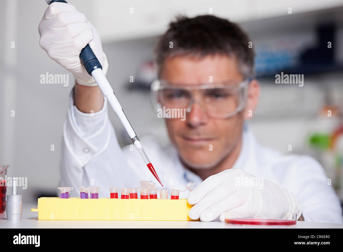 Germany, Bavaria, Munich, Scientist pouring red liquid with pipette in test tube for medical research in laboratory - Stock Image