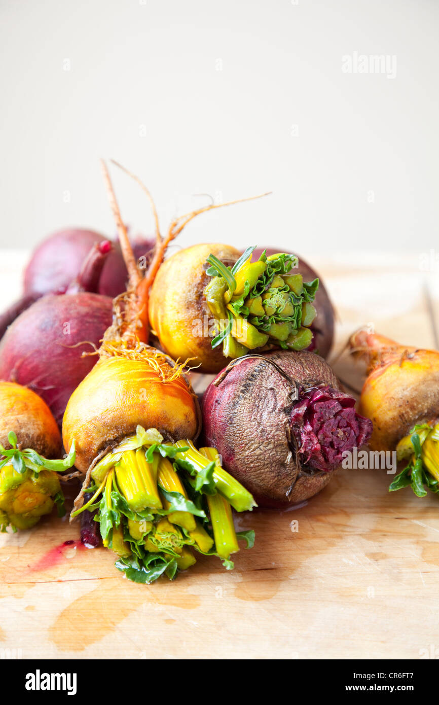 Group of beets and turnips Stock Photo