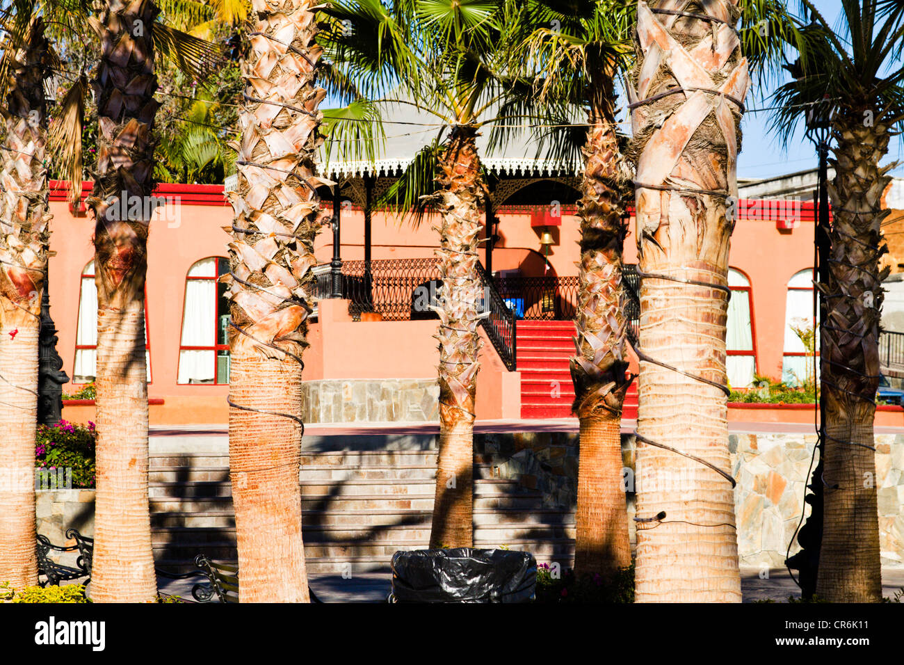 View of bandstand and municipal  building through palm trees in 'Todos Santos' Baja Mexico - Stock Image