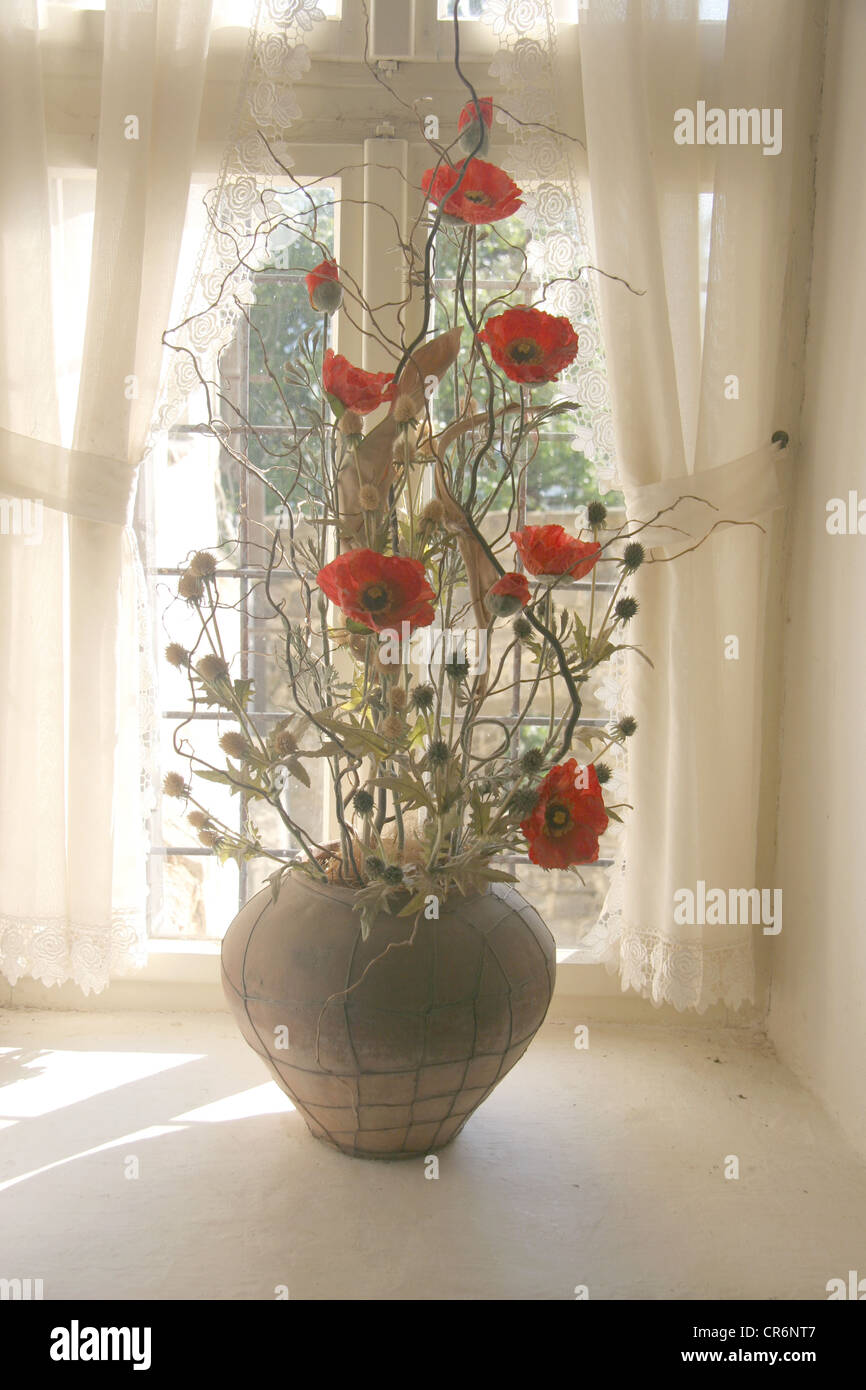 Vase with dry flowers against a window. - Stock Image
