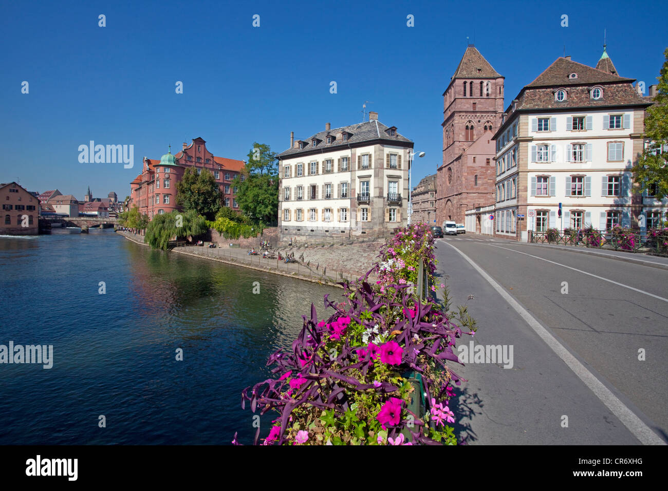 Flower-covered bridge overlooking the Ille river and the Église Saint-Thomas church, Strasbourg, Alsace, France, - Stock Image