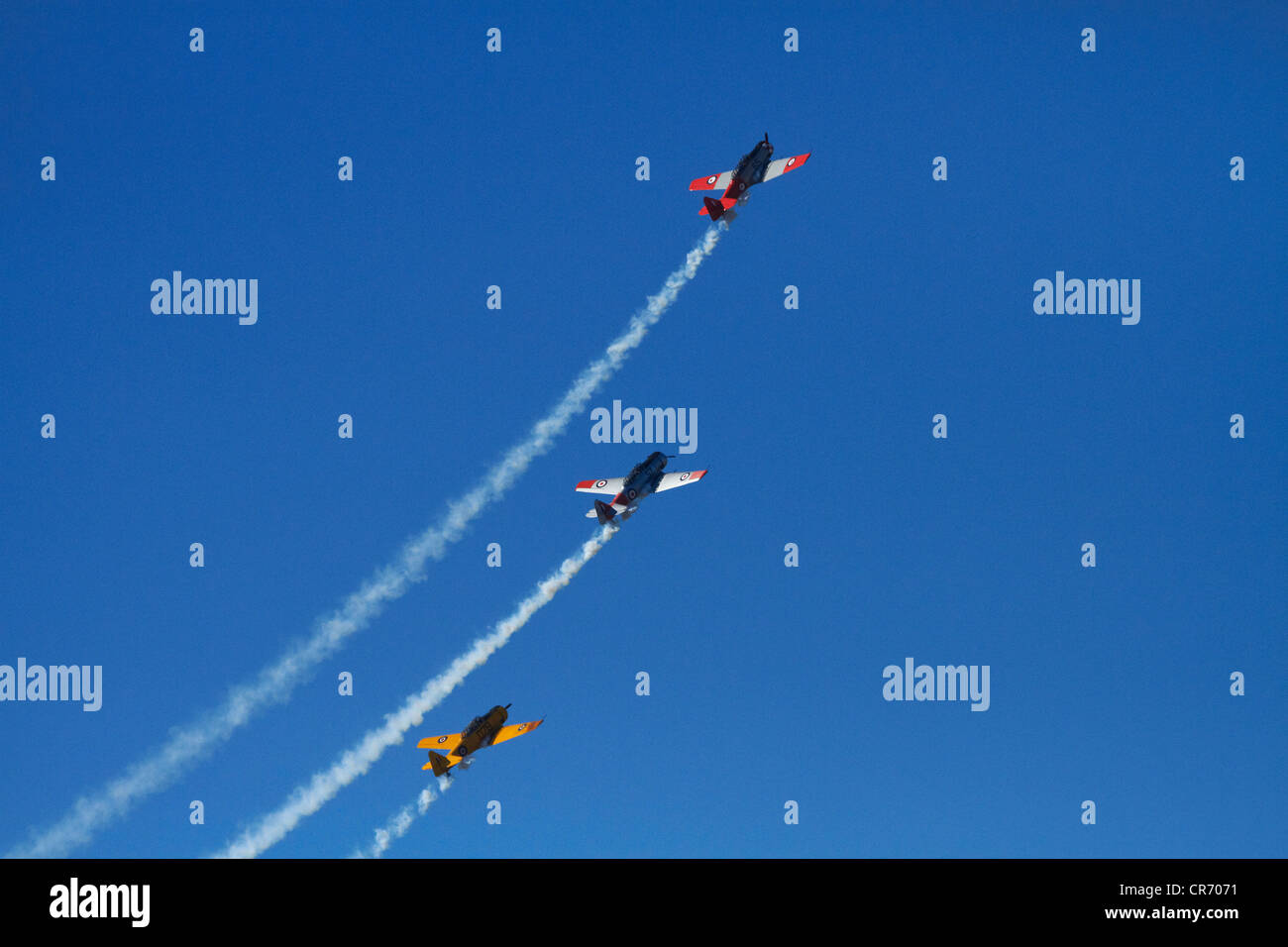 Aerobatic display by North American Harvards, or T-6 Texans, or SNJs - Stock Image