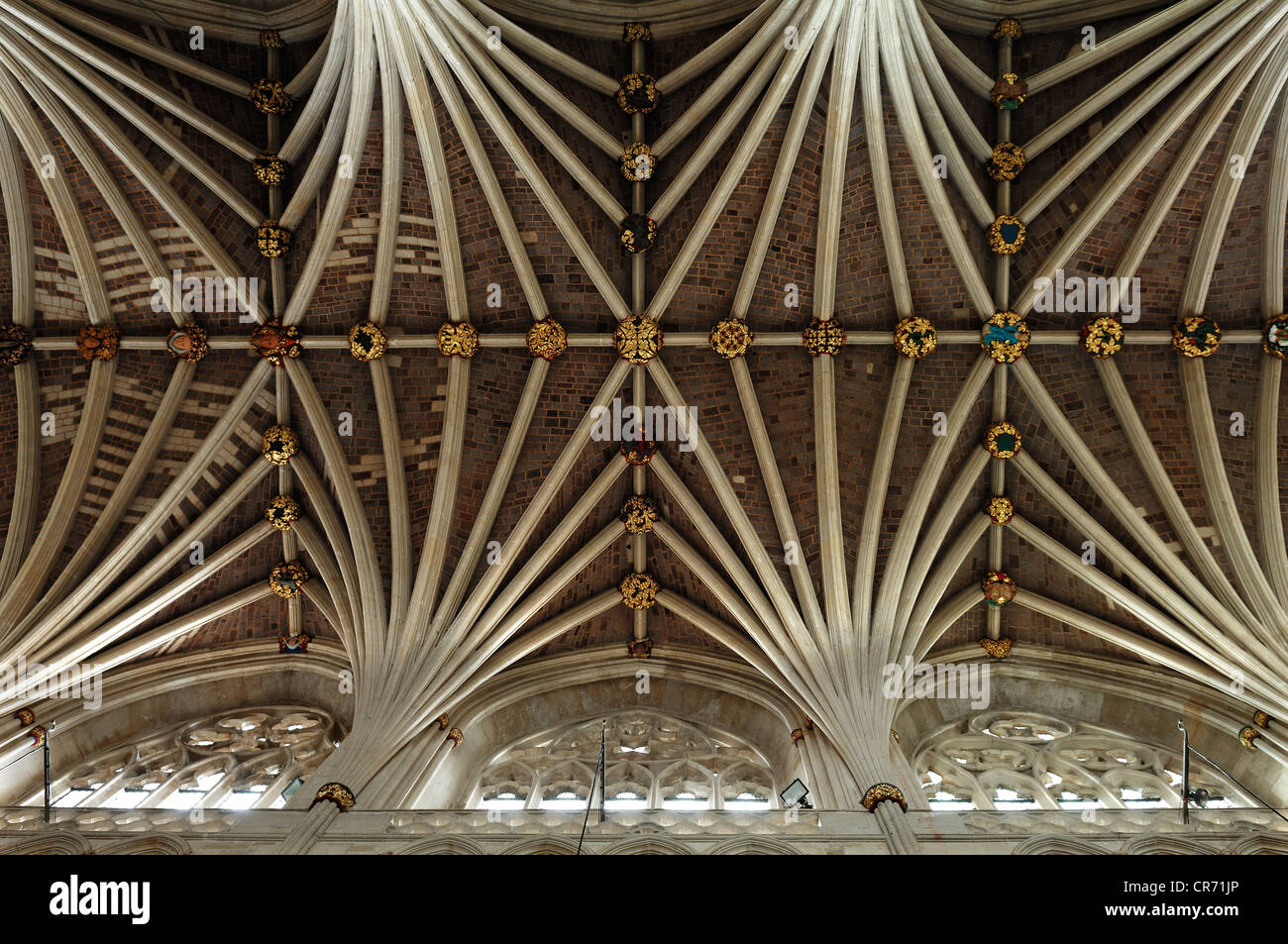 Gothic vault of Exeter Cathedral, 13th Century, side view, Exeter, Devon, England, United Kingdom, Europe - Stock Image