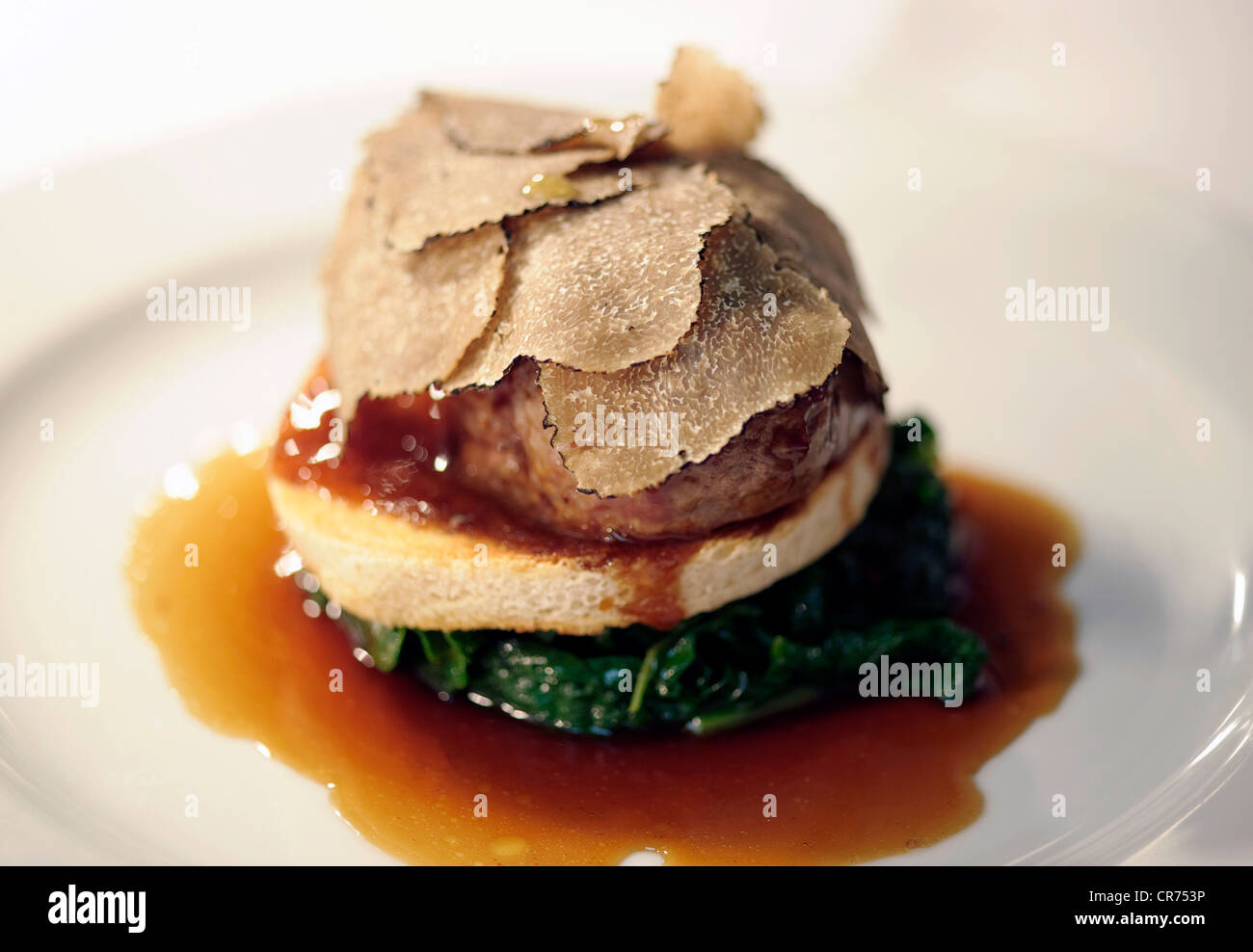 posh expensive restaurant meal with truffles and sauce - Stock Image