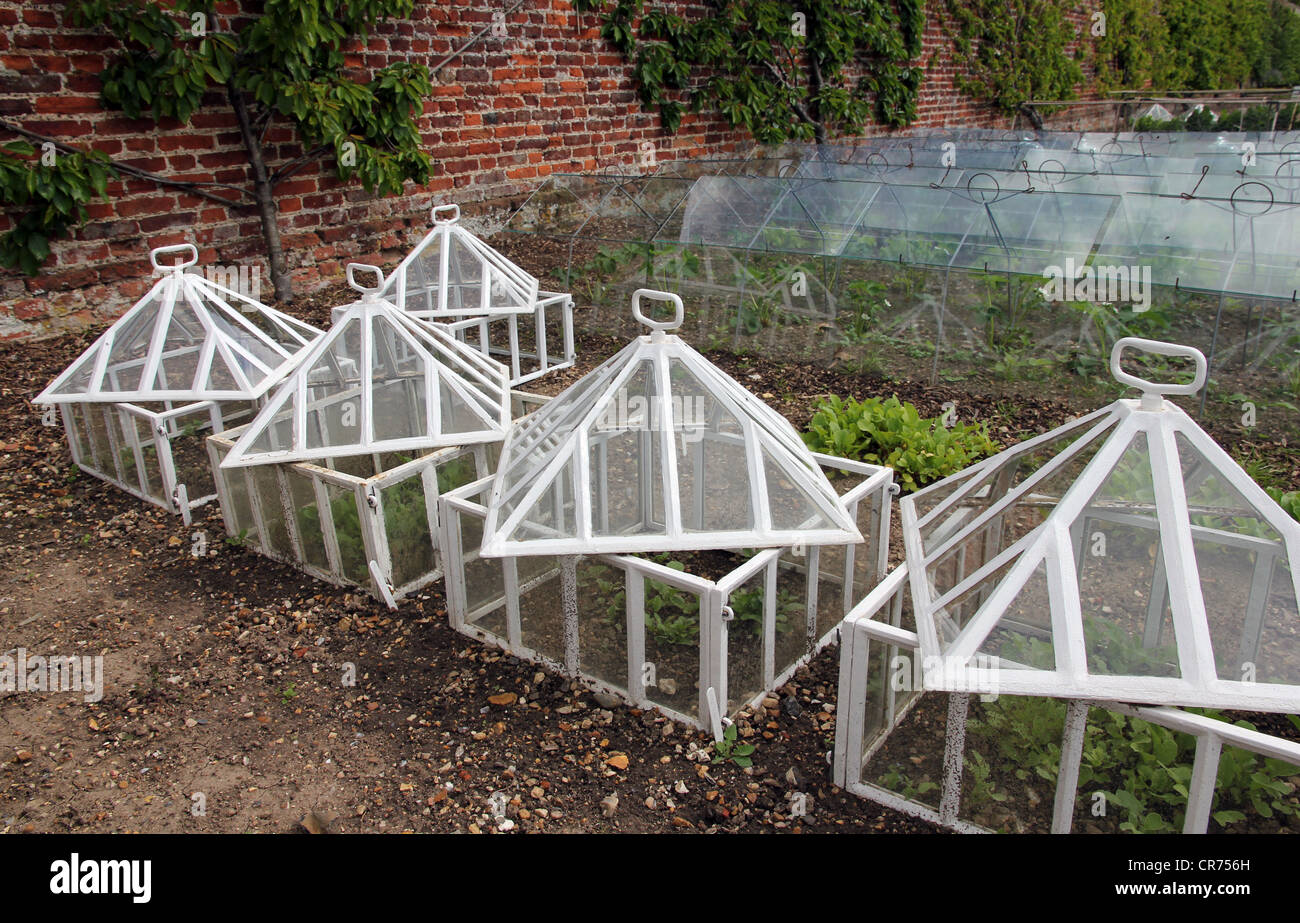 glass and iron garden frames in walled garden of Jacobean stately home - Stock Image