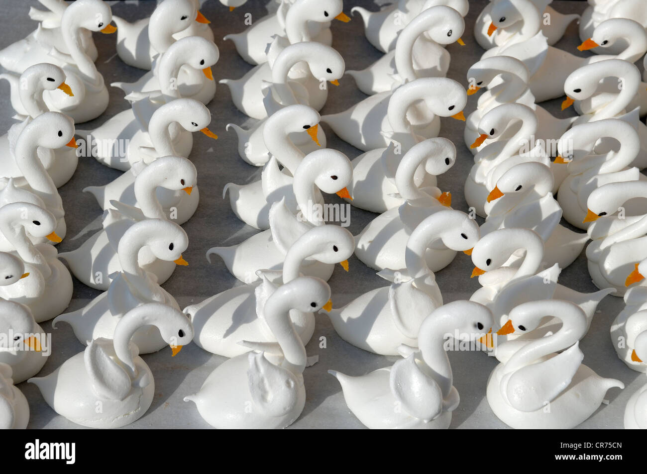 Meringue swans with beaks made from apricots in a patisserie - Stock Image