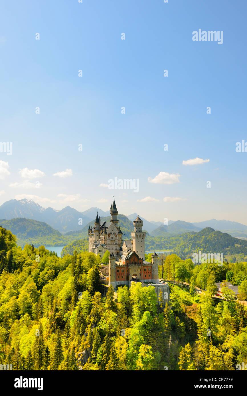 Schloss Neuschwanstein Castle near Fuessen, Ostallgaeu district, Allgaeu, Bavaria, Germany, Europe - Stock Image