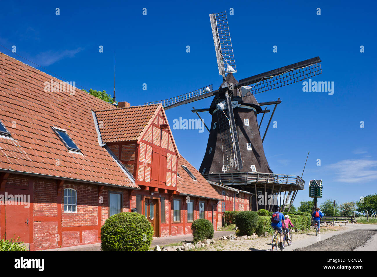 Mill in the Mills and Agricultural museum, Lemkenhafen, Fehmarn island, Baltic Sea, Schleswig-Holstein, Germany, - Stock Image