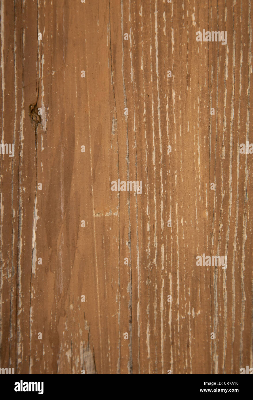 Weathered old wood. Background texture - Stock Image