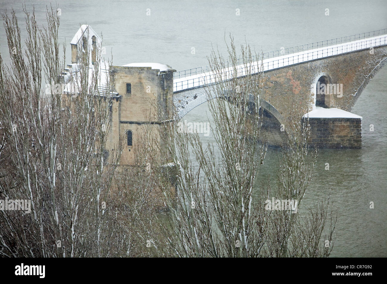 France, Vaucluse, Avignon, Pont Saint Benezet built in the XIIth century on the Rhone - Stock Image