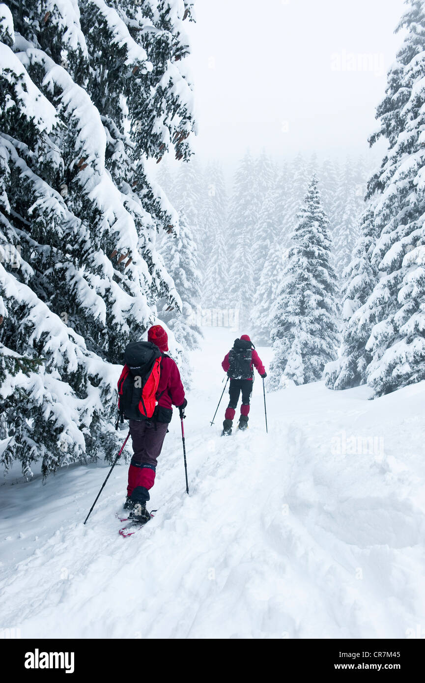 France, Isere, snowshoes hikking near Chamrousse in the Massif de Belledonne, going up to the Robert Lakes - Stock Image